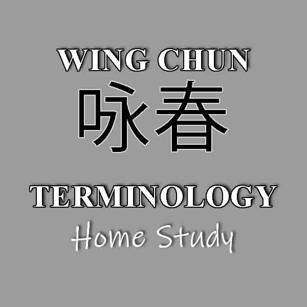 Wing Chun Terminology